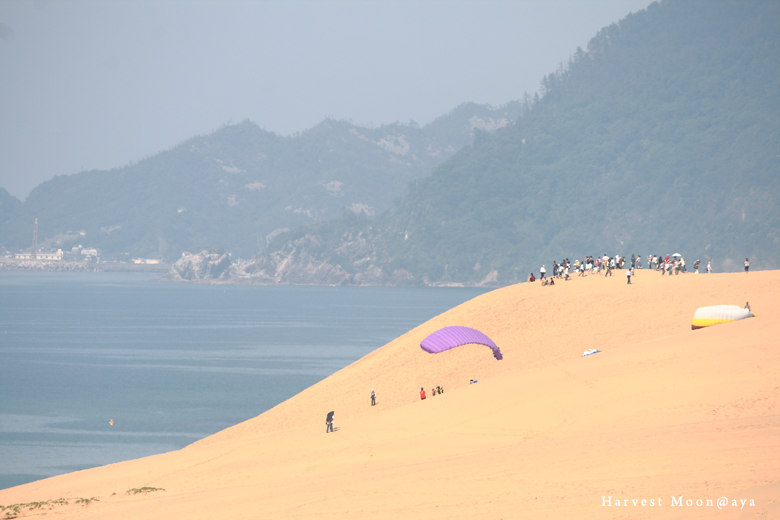夏の始まり~海岸_b0208495_23472712.jpg