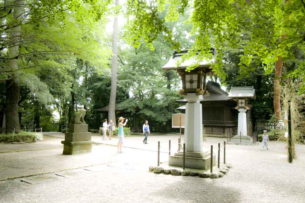 setagaya-hachiman_b0252796_12154896.jpg