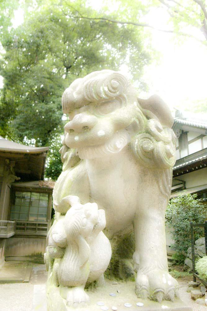 setagaya-hachiman_b0252796_12162541.jpg