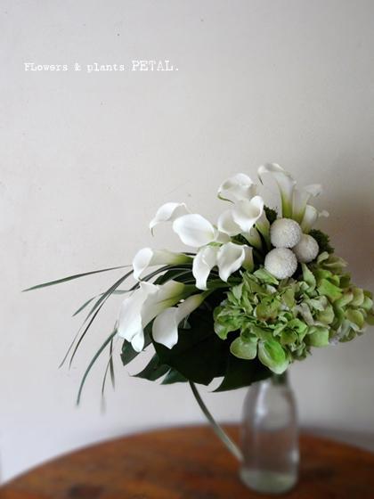 白い色のパワー_d0157716_2003664.jpg