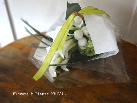 白い色のパワー_d0157716_2064323.jpg