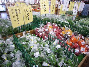 夏野菜続々_c0141652_10562893.jpg