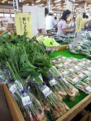 夏野菜続々_c0141652_10563535.jpg