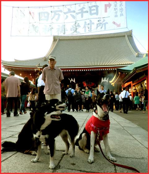 「江戸の夏」、満喫してます!_e0236072_16375035.jpg