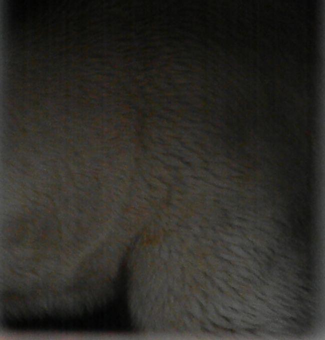 b0014576_20591851.jpg