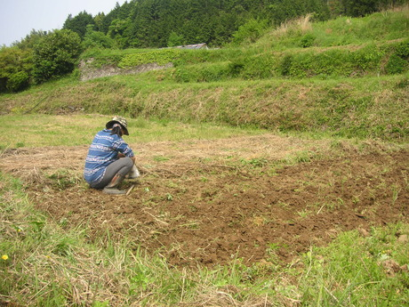 大垪和(おおはが)360℃棚田村企画開始!!_d0197497_14314497.jpg