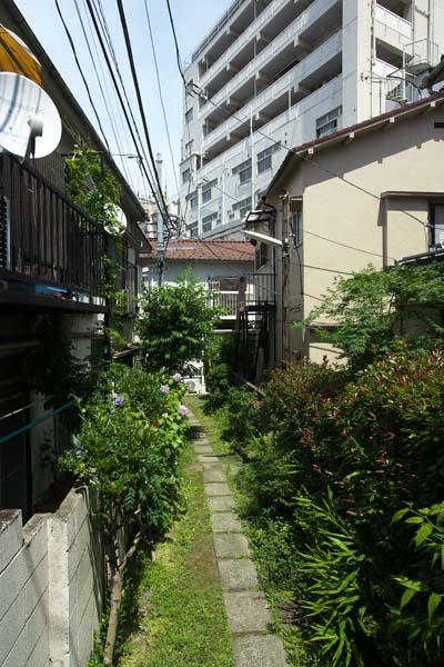 神田川_d0272207_21357.jpg