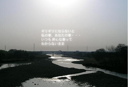 a0104940_11103029.jpg