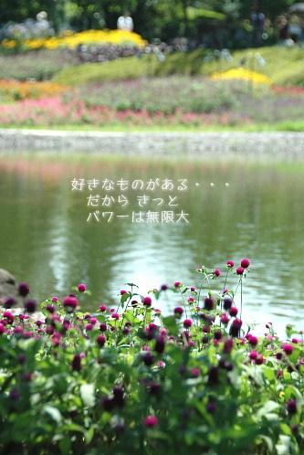 a0104940_11254549.jpg