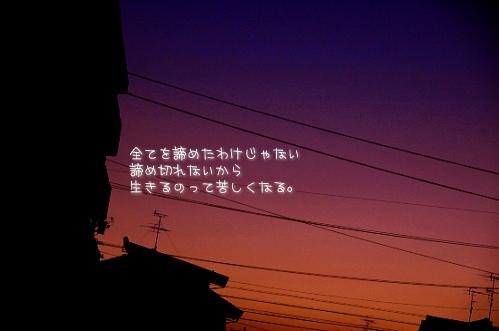 a0104940_11341414.jpg