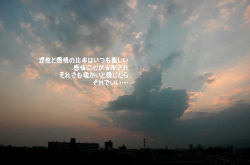 a0104940_11345517.jpg