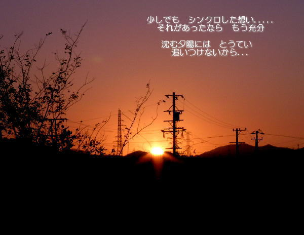 a0104940_347754.jpg