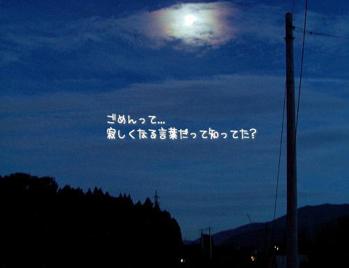 a0104940_410124.jpg