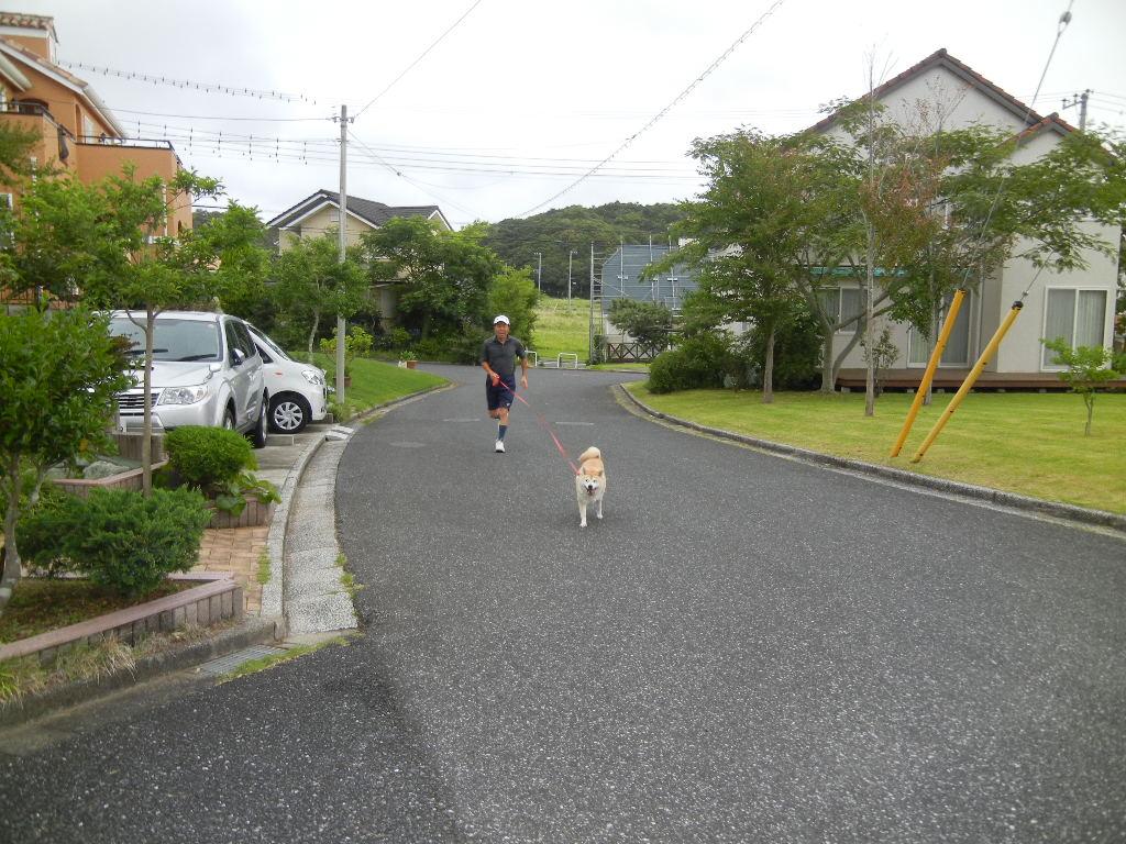 '12,7,12(木)愛ちゃん散歩は大ハッスル!_f0060461_9434060.jpg