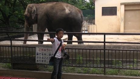 動物園へ行ってきました_d0191262_564923.jpg