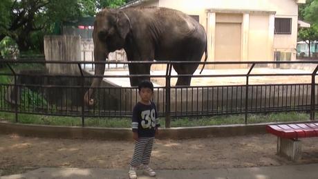 動物園へ行ってきました_d0191262_57298.jpg