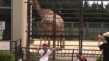 動物園へ行ってきました_d0191262_594374.jpg