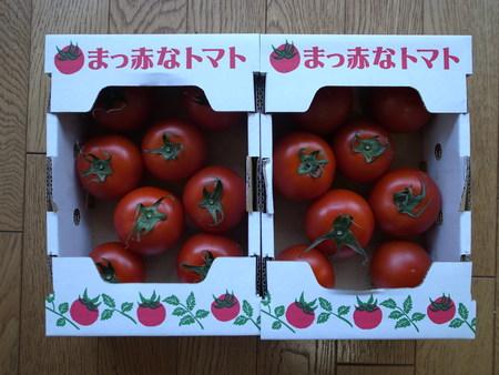 日焼け予防 カゴメ高リコピントマト リピ買い_e0271890_21392788.jpg