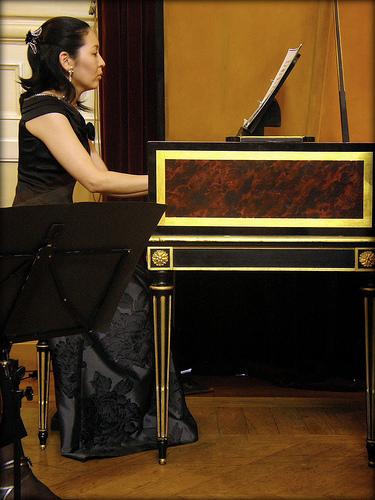 パリ・シャトレ劇場/les photos de concert a Paris_d0070113_9104977.jpg