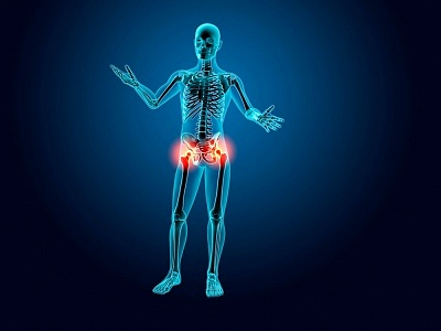 Skeleton with Hip Joint Inflammation