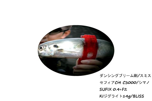 c0198333_0114141.jpg