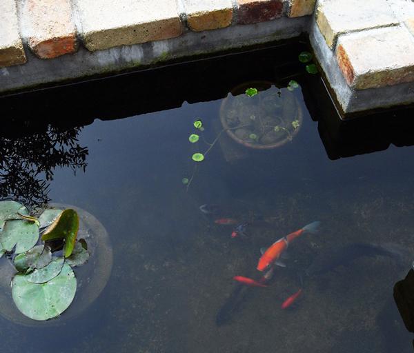 池底掃除用ポンプを作る_d0130640_10202079.jpg