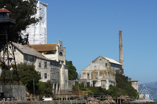 241 Alcatraz Island ~お目当ては野鳥~_c0211532_187415.jpg