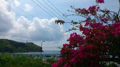 7月 14日  お散歩散歩~_b0158746_1764859.jpg