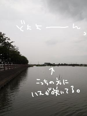 b0092580_3165071.jpg
