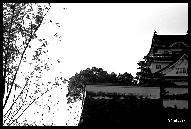 2012/07/14_f0139991_10213518.jpg