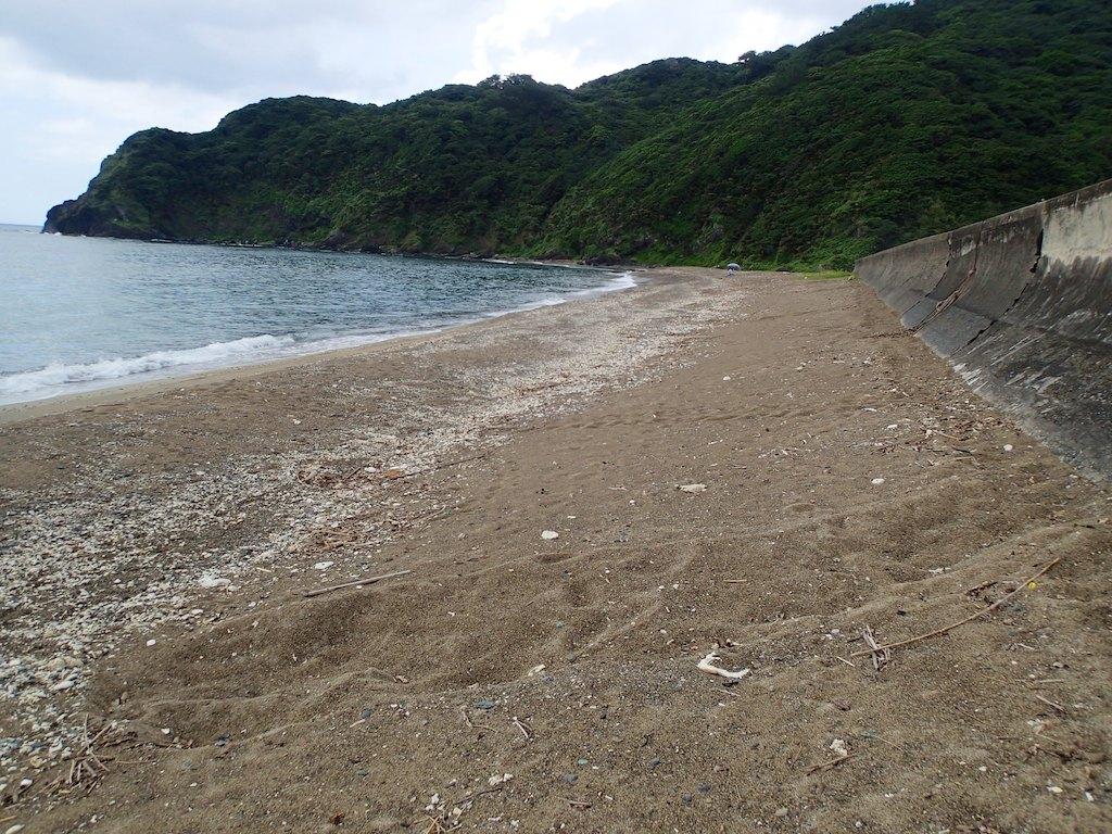 7/14 名瀬ウミガメ上陸痕跡調査_a0010095_20382774.jpg