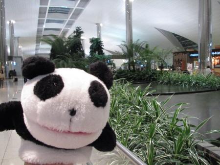 ドバイ空港でご当地マック~成田からドバイ経由でアンマンへ~_f0033598_23333827.jpg