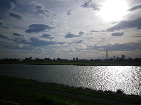 江戸川_b0207536_2321225.jpg