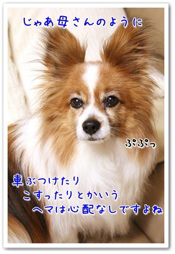 d0013149_23293814.jpg