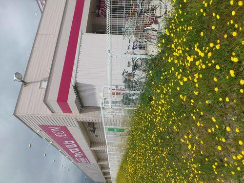 マックスバリュ石川店_b0106766_0215882.jpg