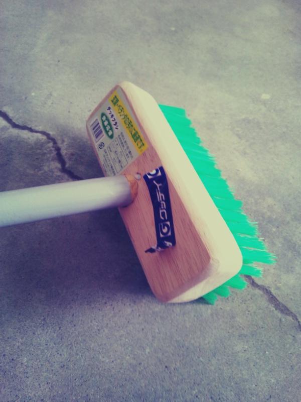 雨あがる。デッキブラシでお掃除。_c0246783_21353228.jpg