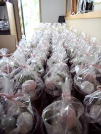 Un petit cadeau pour une cérémonie du mariage_d0232015_2317699.jpg