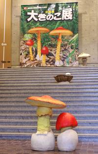 鳥取県立博物館大きのこ展と植田調の旅_f0108133_23165289.jpg