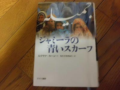 5月と6月に読んだ本_a0025572_2238385.jpg