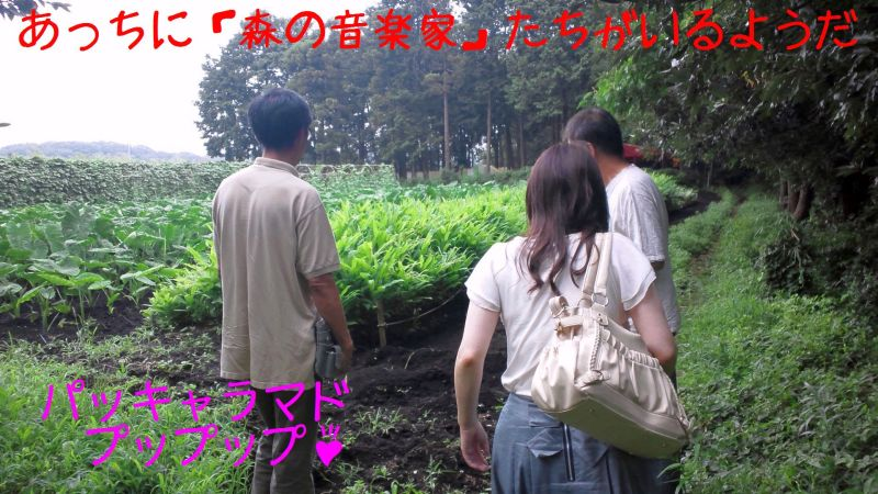 ちぇこかっぱ 農園に現る_a0163788_22102991.jpg