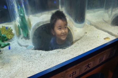 能登島水族館、ちょっと紹介!_a0128408_18543697.jpg