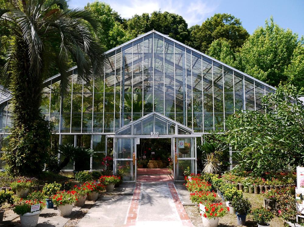 和歌山県植物公園緑花センター _b0093754_22332370.jpg
