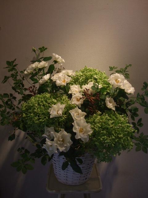 オークリーフ(グリーンアナベルと薔薇ウェディングドレスのアレンジメント)_f0049672_1150309.jpg