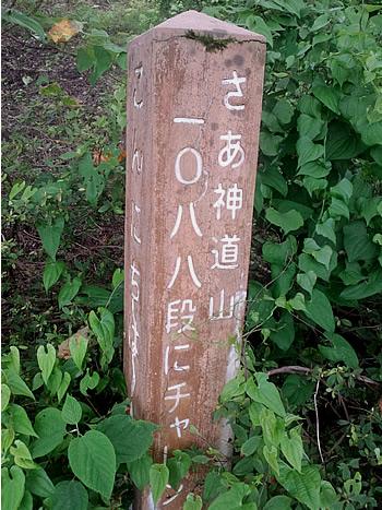 神道山1088段_c0092877_22395218.jpg