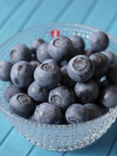 大粒のブルーベリー収穫とブルーベリーとアメリカンチェリーソースのバニラサンデー☆_e0159185_3105077.jpg