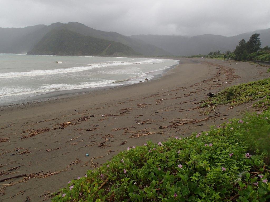 7/17 台風7号_a0010095_17135751.jpg