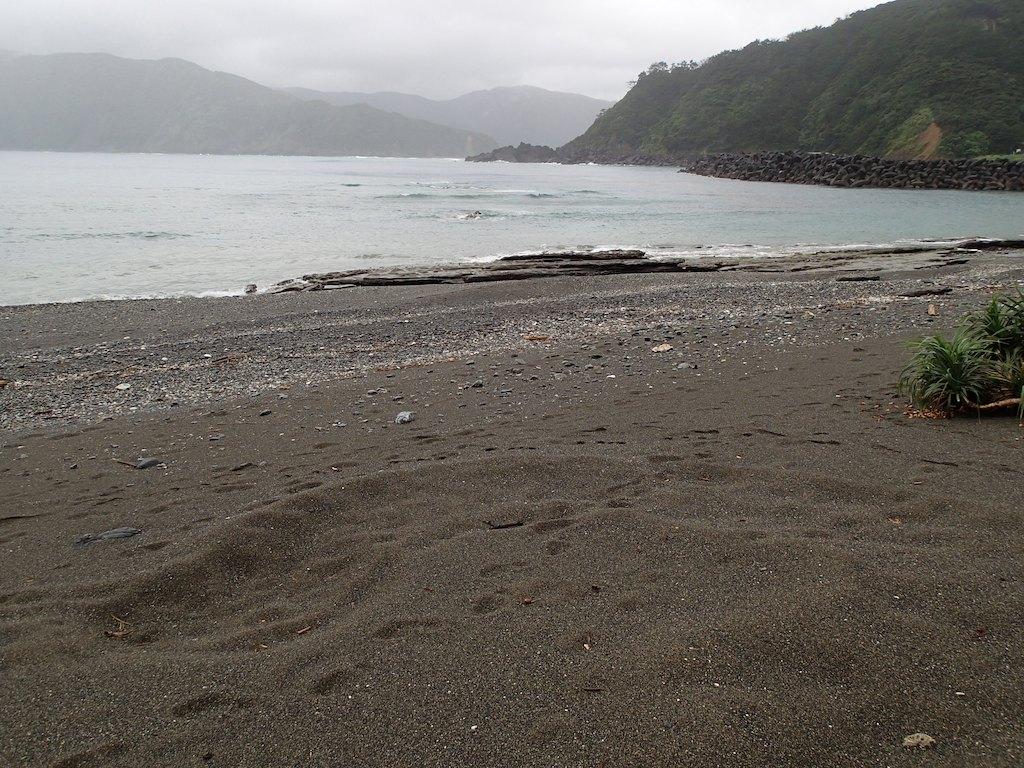 7/17 台風7号_a0010095_1714144.jpg
