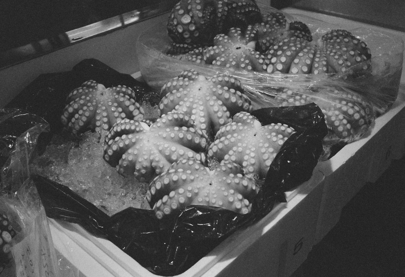 蛸。_c0120903_240399.jpg
