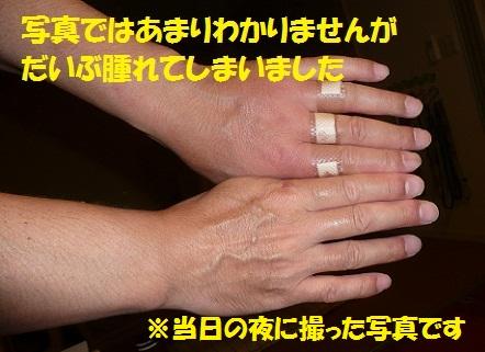 f0121712_15305159.jpg