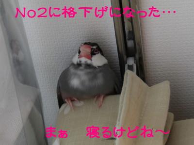 b0158061_20103927.jpg